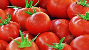 En çok fiyatı düşen ürün domates