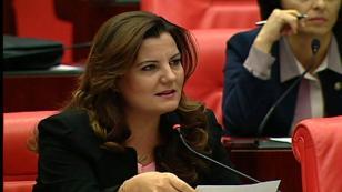 Milletvekili Hürriyet, Kocaelispor'u meclise taşıdı