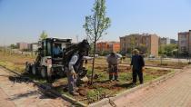 Çayırova Belediyesi Tarafından İlçeye Dördüncü Mesire Alanı Yapılıyor