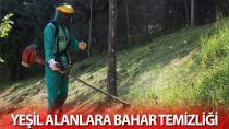 Yeşil alanlara bahar temizliği
