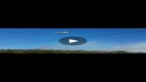 Gebze'de orman yanıyor