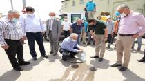 Gebze'de Sinekle Mücadele Çalışmaları Sürüyor